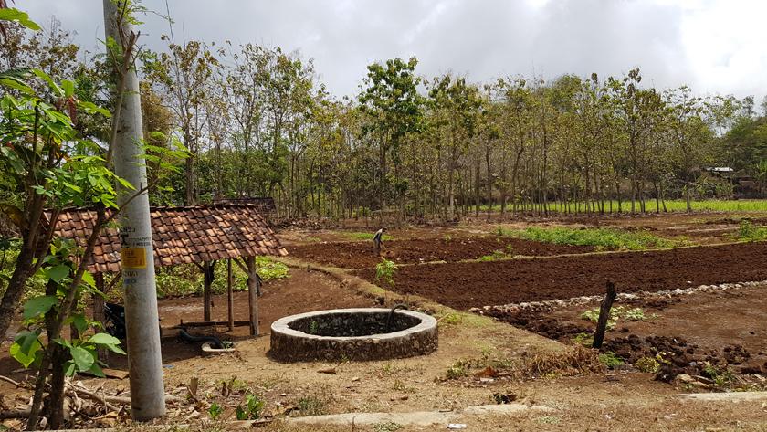 A farmer works ploughed land in rural landscape