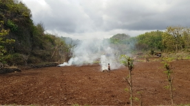 A small figure passes billowing smoke from fires in a ploughed field.