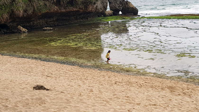 A child with pail wades in the surf at the seashore