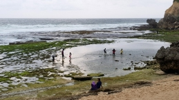 People wade in pools of water at the edge of the seashore